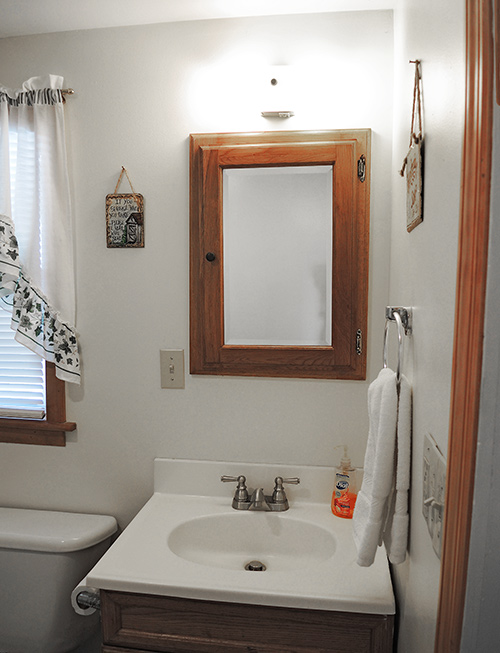Trout Brook first floor bath with shower