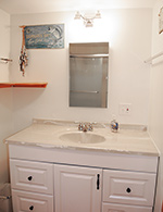 Trout Brook second floor bath with shower