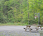 Black Moose basketball net